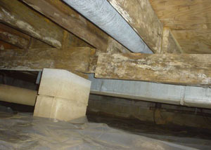 rotting crawl space supports
